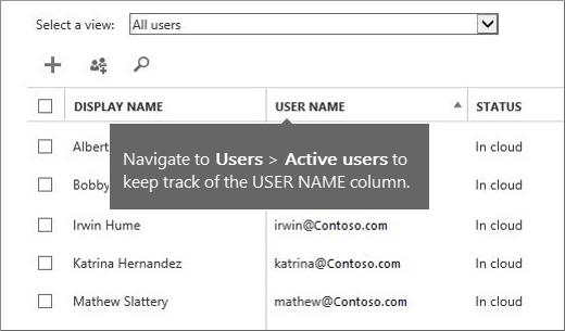 Lajur Nama Pengguna dalam pusat pentadbiran Office 365
