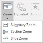 Menunjukkan jenis zum yang boleh dipilih apabila anda pergi ke selitkan > Zum: ringkasan zum, slaid zum dan Seksyen zum.