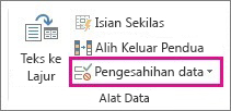Pensahihan Data pada tab Data