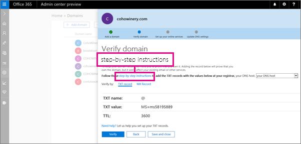 Pada halaman sahkan, ikuti arahan untuk menambah rekod TXT pada hos DNS anda