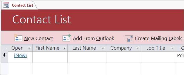Borang senarai Kenalan dalam templat pangkalan data Kenalan Access