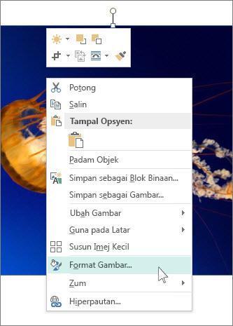 Petikan skrin opsyen Format Gambar dalam Publisher.