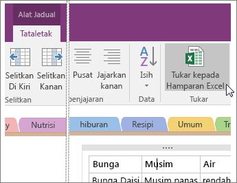 Petikan skrin butang Tukar kepada Hamparan Excel dalam OneNote 2016.