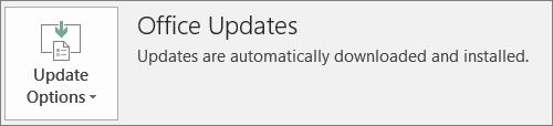 Petikan skrin Office kemas kini dalam aplikasi Office akaun