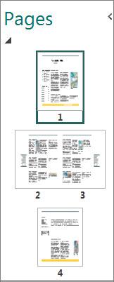 Anak tetingkap navigasi halaman menunjukkan kedua-dua halaman tunggal dan hamparan dua halaman.