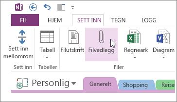 Sette inn et filvedlegg, slik at du har en kopi av filer i OneNote.