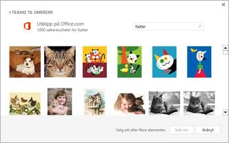 Eksempel på kattebilder på Utklipp-stedet