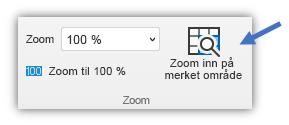 Skjermbilde av zoom til merket område-knappen som er i Visning-fanen på båndet.