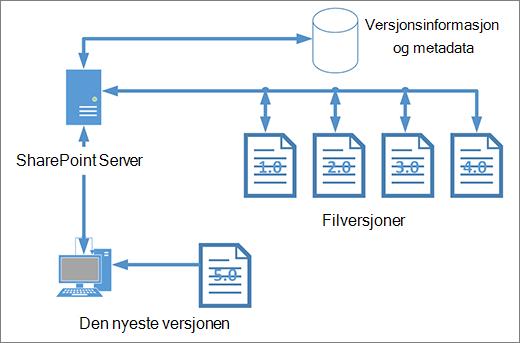 Versjonskontroll lagringsplass diagram