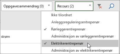 Skjermbilde av rullegardinlisten for Filter-ressursene på oppgavetavlen med to valgte ressurser