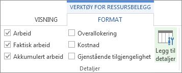 Kategorien Format for verktøy for ressursbelegg, knappen Legg til detaljer