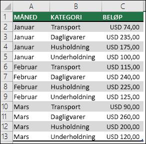 Eksempel på data om utgifter for en husstand for å opprette en pivottabell med måneder, kategorier og beløp