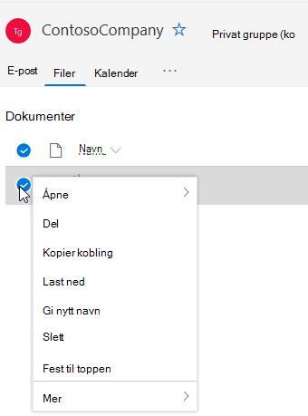 Viser alternativer for sletting og gi nytt navn til fil