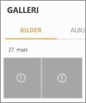 En kryptert bildefil i Fotogalleri-appen.