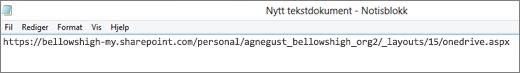 Lim inn nettadressen i et program, for eksempel Notisblokk.