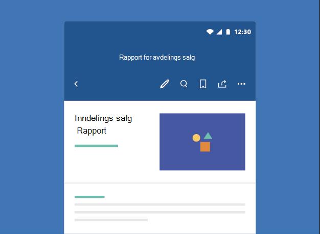 Viser et Word-dokument