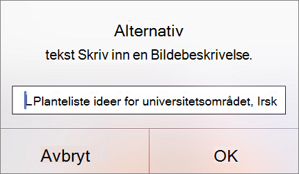 Alternativ tekst for bildemenyen i Outlook for iOS