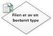 Filen har en bestemt type