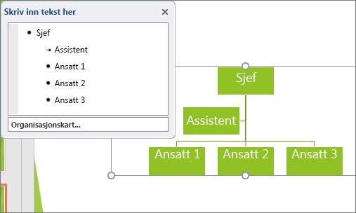Viser et eksempel på et SmartArt-organisasjonskart