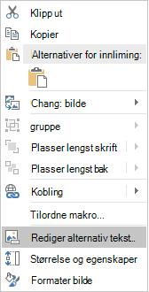 Meny for Excel Win32 redigere alternativ tekst for bilder