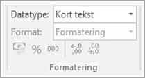 Skjermkodesnutt som viser datatypefeltet
