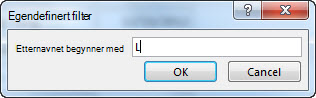 Dialogboksen Egendefinert filter med bokstaven L skrevet inn.