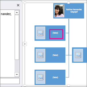 SmartArt organisasjonkart med bilder med uthevet boks på kartet som viser hvor du kan skrive inn tekst