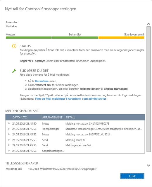 Skjermbilde av siden som viser detaljer om meldingssporingen, med et eksempel på hvordan meldingssporingsdetaljer ser ut.