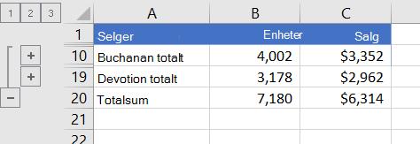 Disponert liste som bare viser rader med totalsummer