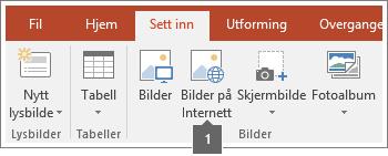 Skjermbilde av hvordan du legger til bilder på Internett i Office-programmer.