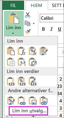 Klikk Lim inn på Hjem-fanen for alternativene Lim inn utvalg