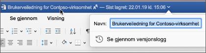 Hvis du klikker dokument tittelen, kan du gi nytt navn til filen eller se versjons loggen