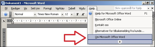 Hjelp for Word 2003, Om