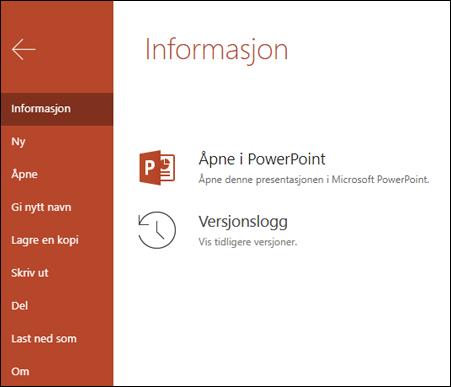 Informasjon-fanen i Office Online som viser versjons Logg elementet.