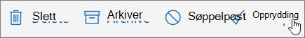 Et skjermbilde viser Rydd-alternativet som er valgt på verktøylinjen for e-post.