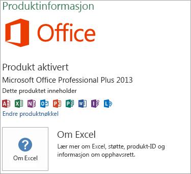 Excel Msi-installasjon