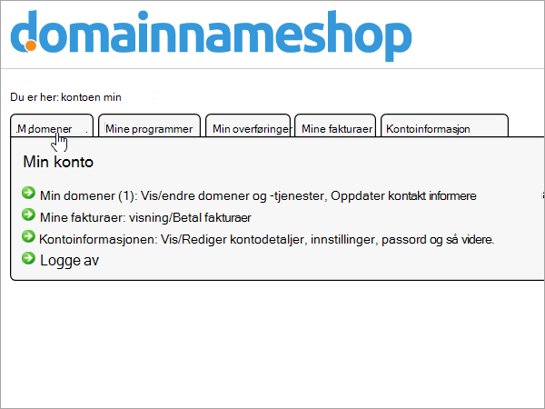 Kategorien Mine domener som er valgt i Domainnameshop
