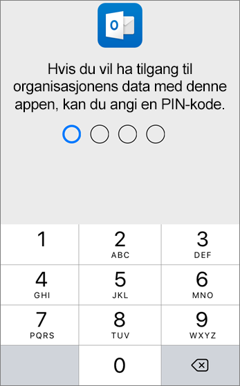 Angi en PIN-kode for å få tilgang til organisasjonens data