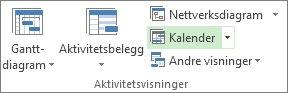 Kalender-knappen i Aktivitetsvisninger-gruppen i kategorien Visning.