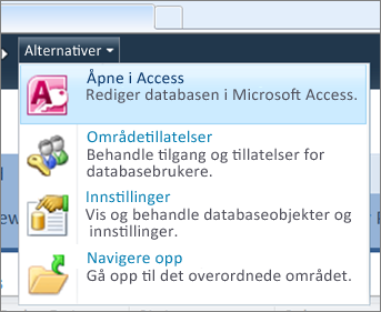 Alternativer-menyen for et webdatabasenettsted på SharePoint