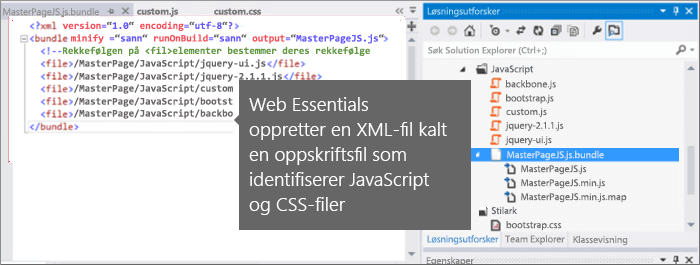 Skjermbilde av JavaScript og CSS-fil