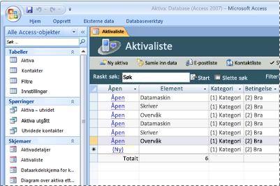 Bruke databasemalen Aktiva