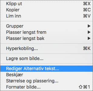 Alternativet Rediger alternativ tekst i hurtigmenyen i PowerPoint for Mac