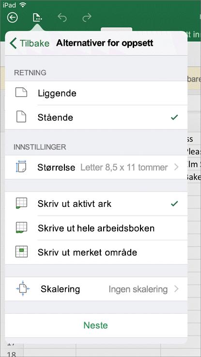 I dialogboksen for utskriftsinnstillinger i Excel for iOS kan du konfigurere hvordan regnearket skrives ut.