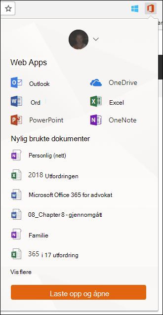 Klikk Office Online filtypen i Chrome utvidelser for å åpne Office Online-panelet.