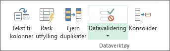 Datavalidering er plassert i Data-fanen under Dataverktøy-gruppen