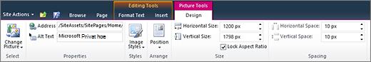 Kategorien Bildeverktøy-fanen kan du angi størrelse, stil, posisjon og alternativ tekst for bilder.