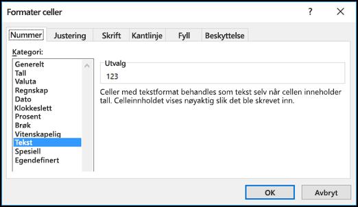 Formater celler-dialogboksen som viser Tall-fanen og Tekst-alternativet som valgt