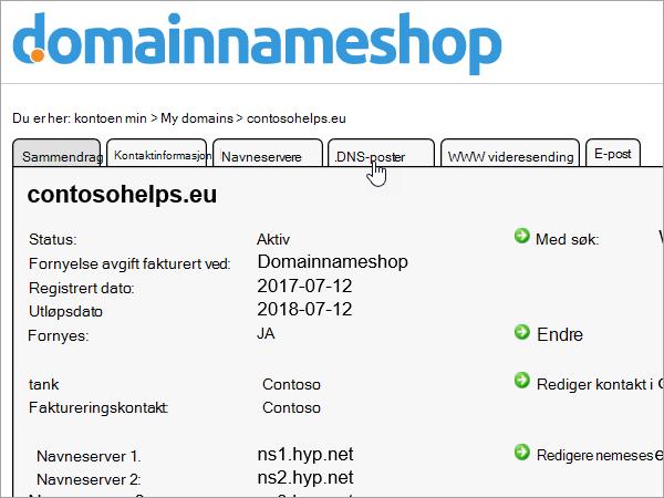 DNS-poster-fanen er uthevet i Domainnameshop
