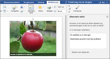 Word-dokument med et bilde og Alternativ tekst-ruten til høyre